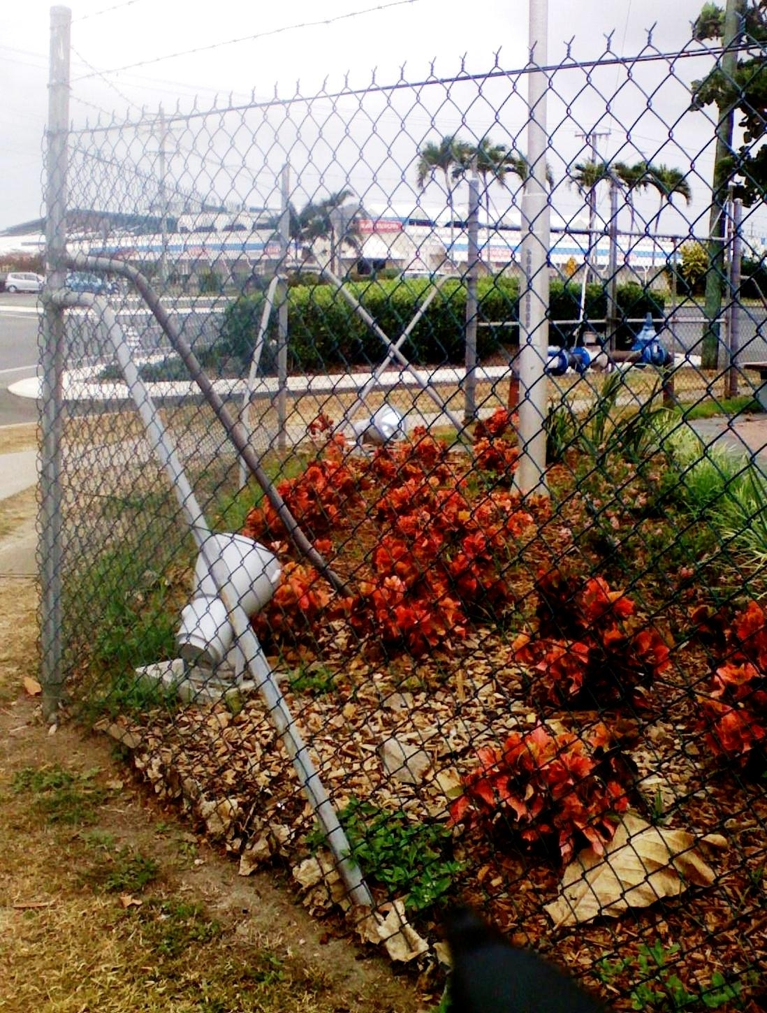 Security Amp Chainwire Arnel Fencing Cairns
