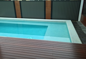 Colourbond with Slat Section